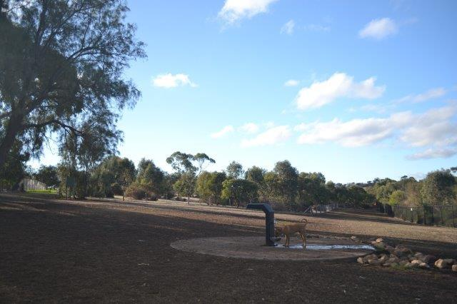 Reserve Street Reserve, Dog parks, City of Marion parks, playgrounds, barbeques, reserves, public toilet, hills views, dog-friendly