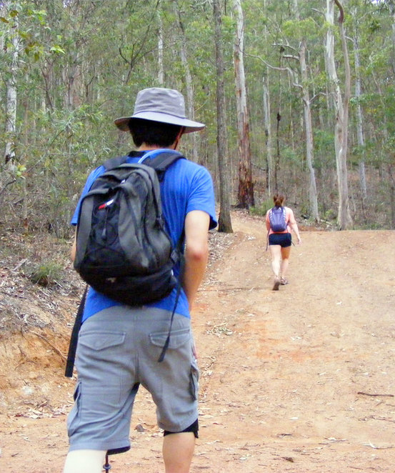 Hiking up the Scorpion Trail at Mt Coot-tha
