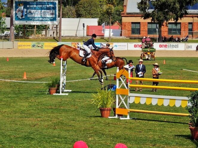 Adelaide Showgrounds, free, expo, children, Adelaide, march, april, may, markets, autumn horse show
