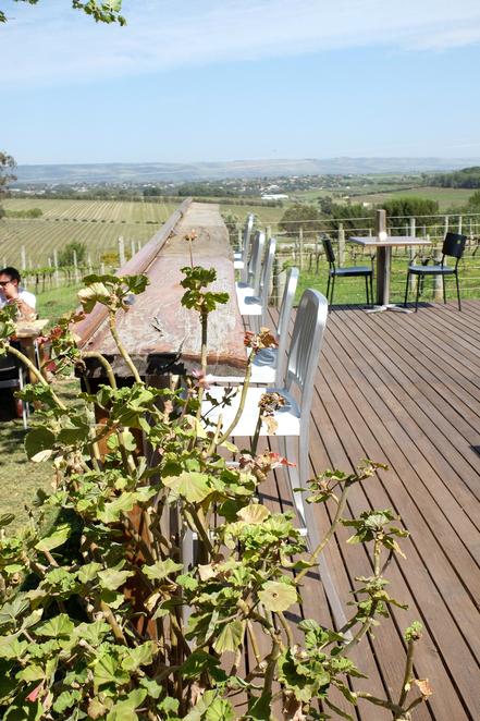Beach Road Wines, McLaren Vale, outdoor dining, adelaide, wine region, wine state, wood oven pizza, tourism, SA