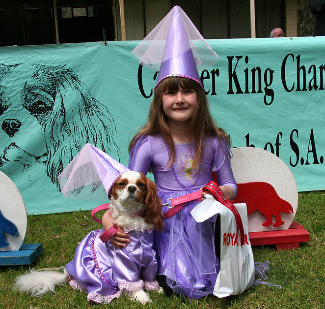 Cavalier King Charles Spaniel, Cavalier Capers, funday, fancy dress,