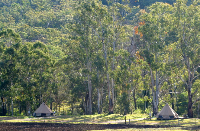 There are commercial campsites, including glamping options in Goomburra, just outside of the national park