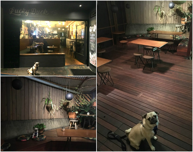 lucky duck cafe and bar, cafe, bar, drinks, coffee, dog friendly, open late, brisbane, highgate hill, southbank, inner suburbs, retro, hipster, tapas, bar foods, tap, food, foodie