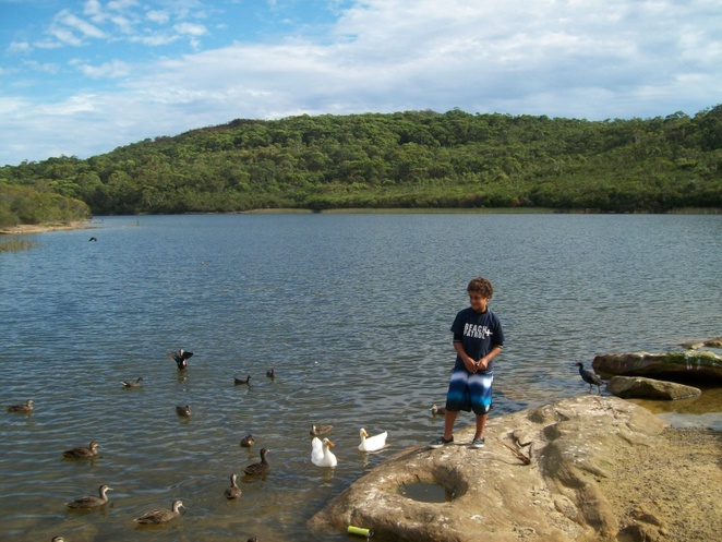 Northern Beaches Fishing and spearfishing - Home | Facebook