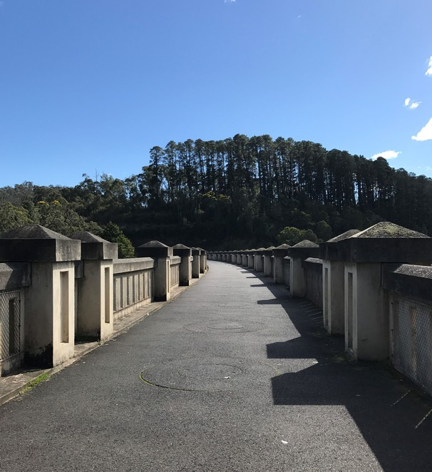 maroondah dam, healesville, yarra valley, bush walks, picnic, free, family, gardens, tracks, lookouts, views