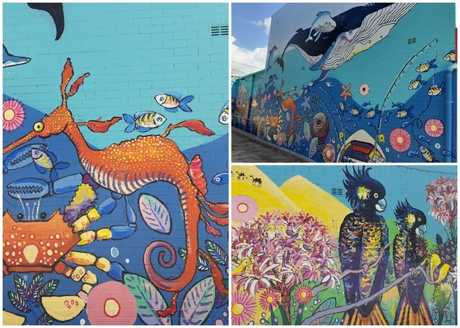 megan barrass, mural, port stephens council, NSW, vibrant spaces fund, port stephens council, mayor, sealife, art, sea, ocean, art,