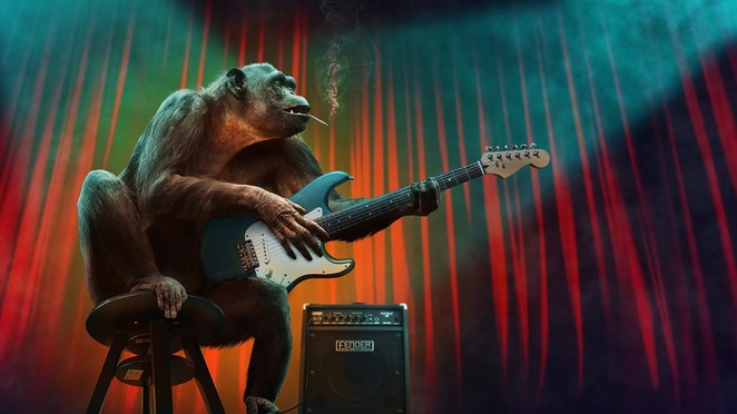 monkey, chimpanzee, guitar, music