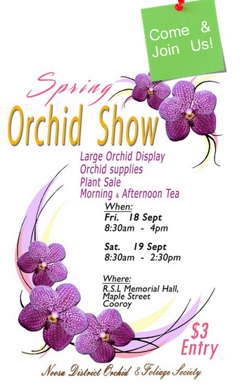 noosa district orchid and foliage society, cooroy rsl, sunshine coast, orchids, spring, show, display, Queensland,