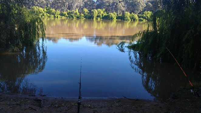 renmark, fishing, riverfront, riverland, south australia, things to do