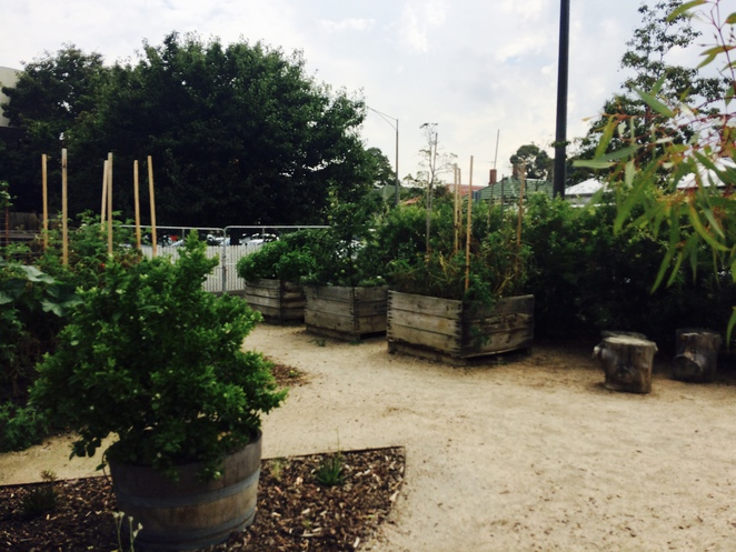 Rudimentary ; Footscray ; Cafe ; Sustainability ; Vegetable Patch ; Organic Gardening