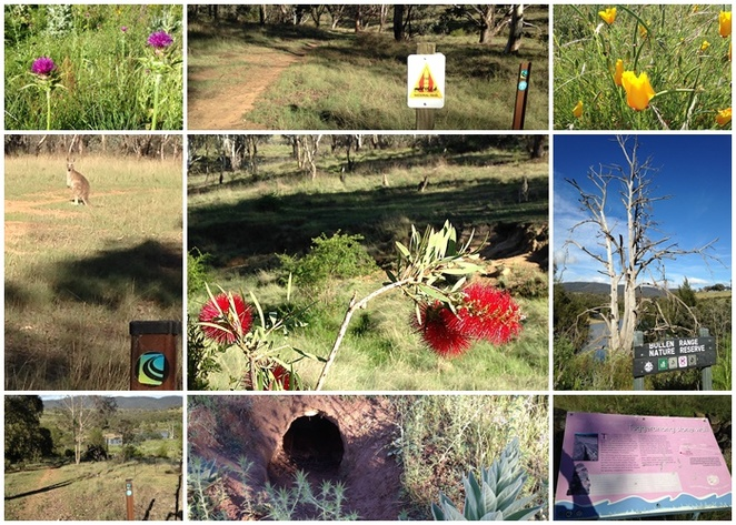 tuggeranong boundary wall, greenway, walks, murrumbidgee river, ACT, bushwalks, short walks, history, early settler,