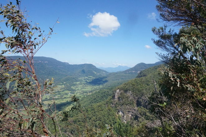 View to Mt Warning