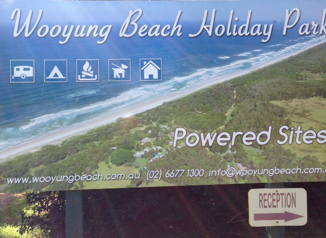 Wooyung Beach Holiday Park, pet friendly, open camp fires, bush camping, un-spoilt beach, motel, pet friendly beach