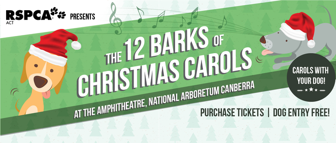12 barks of christmas, RSPCA ACT, christmas events, canberra, december, 2016, ACT,