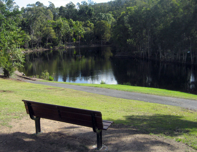 Lake at the back of Brisbane Botanic Gardens