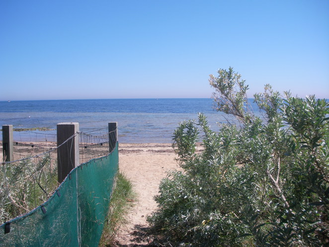 bush,beach,sea,ocean,fence,sand,ricketts,point