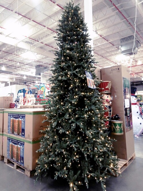 Costco's 2019 Christmas Collection