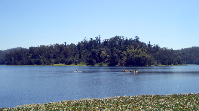 Kayakers at Lake Enoggera