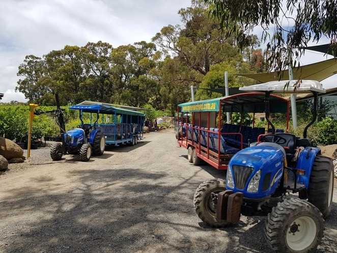 Fruits of The Yarra Valley Festival