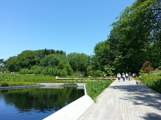 lanscape, spring, summer, Native plant garden, Bronx, New York, The new York Botanical garden