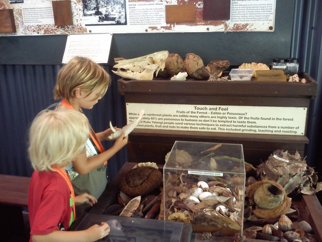 rainforest discovery centre, interpretive centre, Daintree rainforest, things to do near Cairns, family friendly, far north queensland