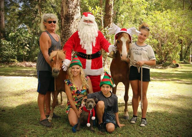 Santa Paws at SCARS, Sunshine Coast Animal Refuge, Tanawha, animal shelter, furry family members photo with Santa, $10 photo with Santa, food, cold drinks, raffles, donations, volunteering