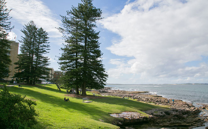 Shelly Park and Beach - Cronulla