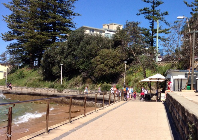 The Beach Shed, Cafe, Dee Why, Northern Beaches