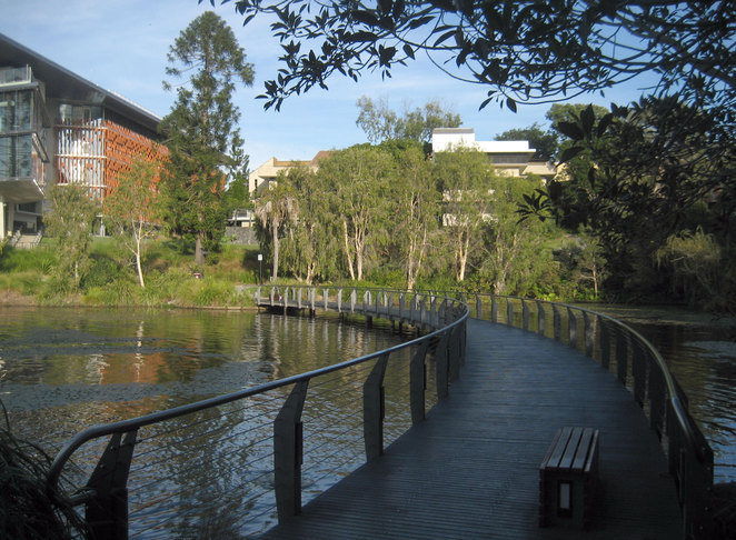 Walkway at the lakes at the University of Queensland