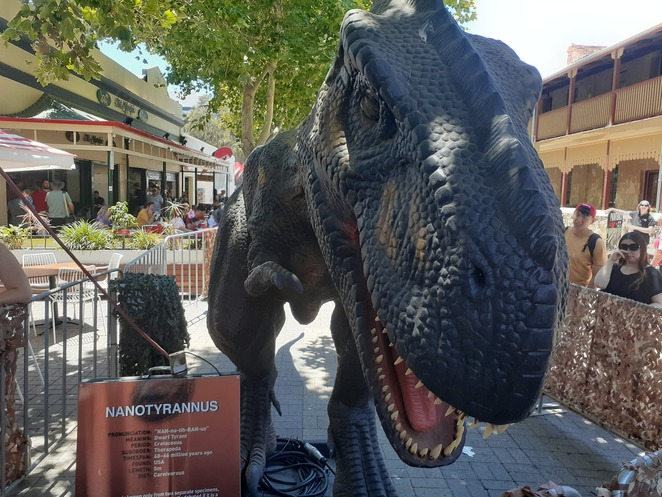 Dinosaurs come allive in Fremantle