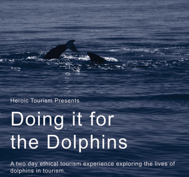 Doing it for the Dolphins event, Heroic Tourism, South Australia