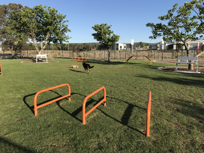 enclosed dog parks, dog adventure playground, sienna wood dog park, where to take dogs in perth,