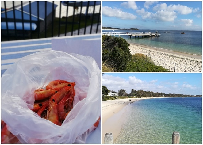 hoberts oyster farm, shoal bay beach, christmas day, lunch, picnics, christmas day lunch ideas, nelson bay, port stephens, 2018, whats on, whats open christmas day, NSW,
