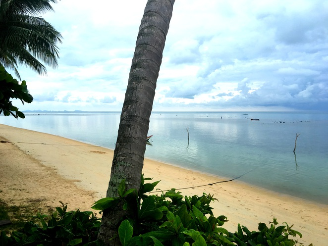 best beaches in koh samui tripadvisor