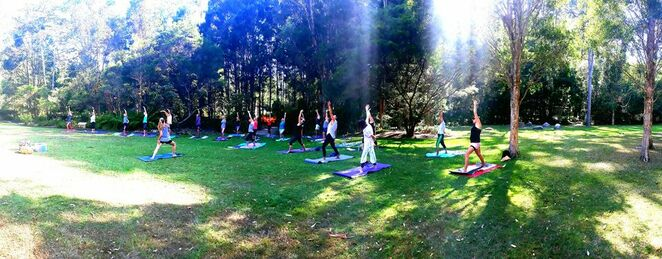 Low Cost Community Yoga, Sunshine Coast, Healthy Sunshine Coast, Council, physical activities, workshops, improving fitness levels, healthy and active lifestyle, Choose to Move, strength, balance, flexibility, Turner Park, Beerwah with Theresa, Bijam of Yoga, Tickle Park, Coolum Beach with Nicole, Healthy Goddess, Skippy Park at Landsborough with Eleisha, Adosa Yoga and Massage Therapy, Millwell Road Community Centre with Laura, Maroochydore, Daily Nurture, join the movement, connect with each service provider, book, own mat and towel, water bottle, sunscreen, hat, make 2021 your year for health and wellbeing, Namaste