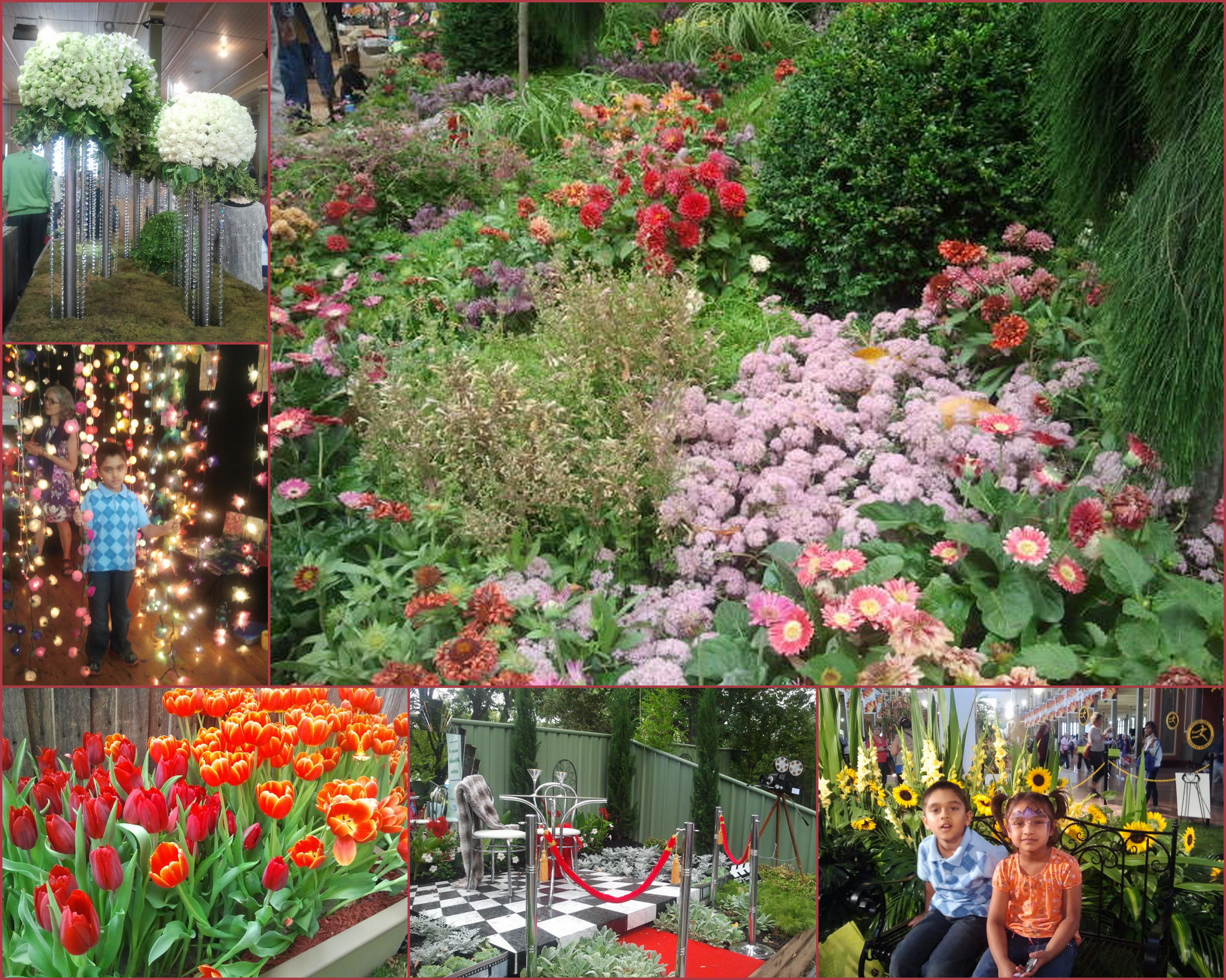 melbourne international flower and garden show 2017 melbourne by happy