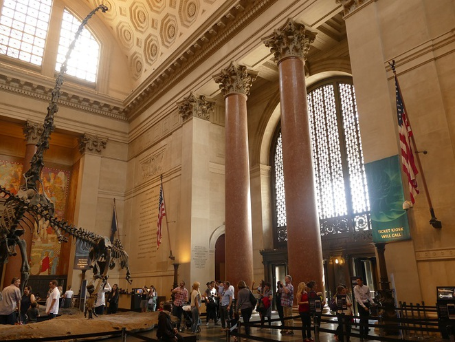 natural history museum, nEW yORK, USA