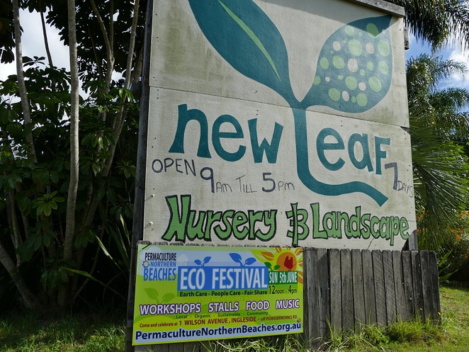 New Leaf Nursery Ingleside nsw