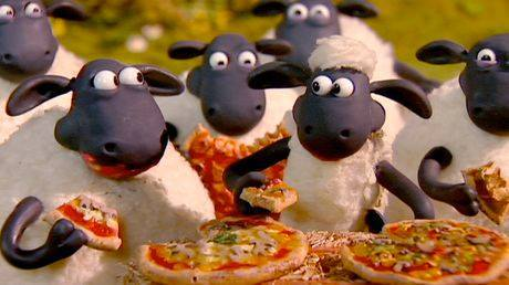 possum valley events, pizza in the paddock, things to do in october in perth, love animals, perth events,