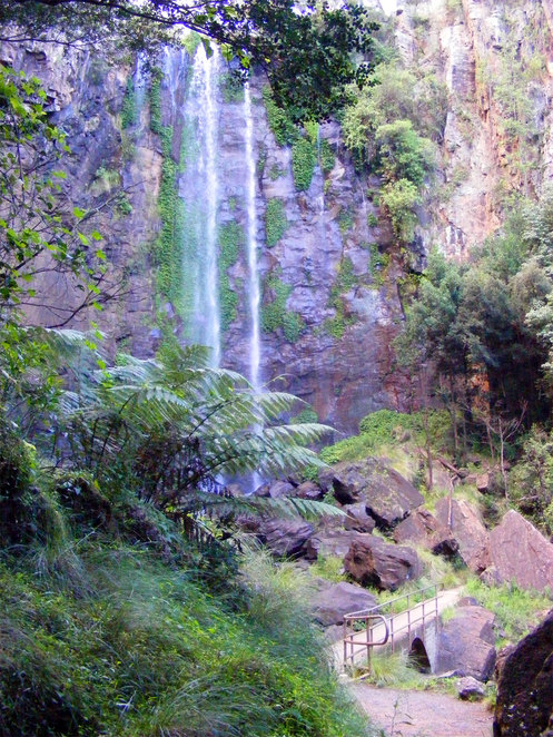 Queen Mary Falls is directly opposite the Caravan and Tourist Park