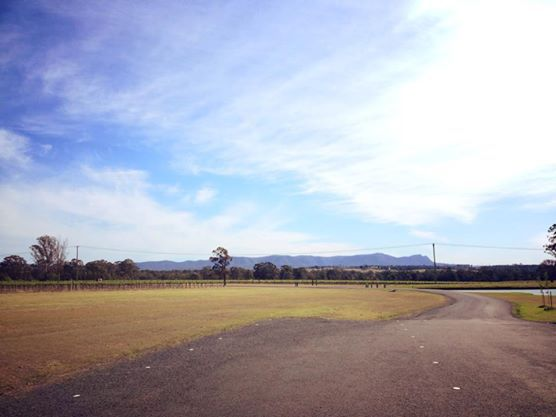 tatler, wines, tapas cafe, hunter valley, nsw, view, countryside, mountains, outdoors, leisure
