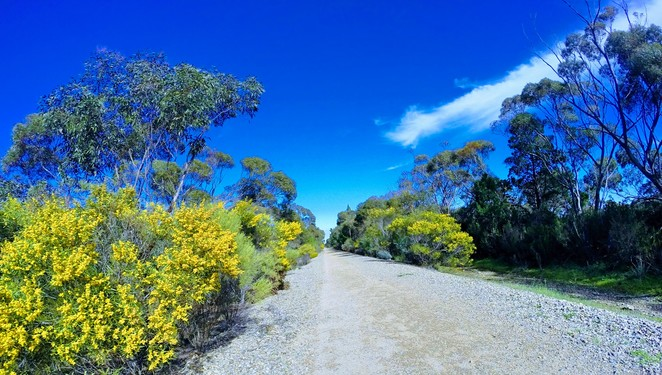 Balaklava, Halbury, Shamus Liptrot Trail, Walk the Yorke, Riesling Trail, Frys Clump, Rocks Reserve, Rail Trail