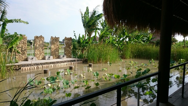 umanyar,restaurant,cafe,ubud,bali, indonesian,authentic,best,cheap