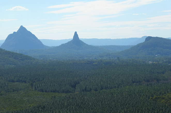 Wild Horse Mountain Lookout, fire tower, 123 metres above sea level, steep incline, panoramic views, Glasshouse mountains, Bribie, Pumicestone Passage, Brisbane, interpretive boards, dogs on a leash