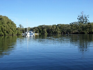 Boats in Cabbage Tree Creek