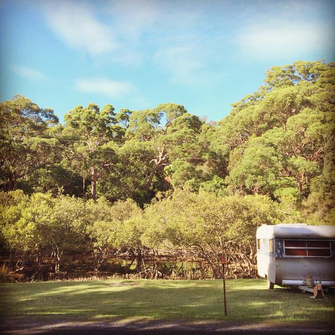 bonnie vale, royal national park, port hacking, river, bundeena, camp, campsite, campground, outdoor, caravan, leisure, adventure