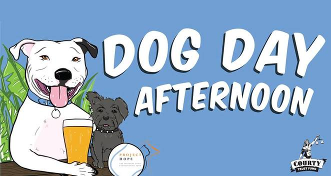 dog day afternoon, Newtown, Sydney, dog event, free, beer, drinks, Sunday, photography, dog event, courthouse hotel, vogue, charity, fundraiser, project hope, southern cross veterinary clinic, new South Wales, stone and wood, keg