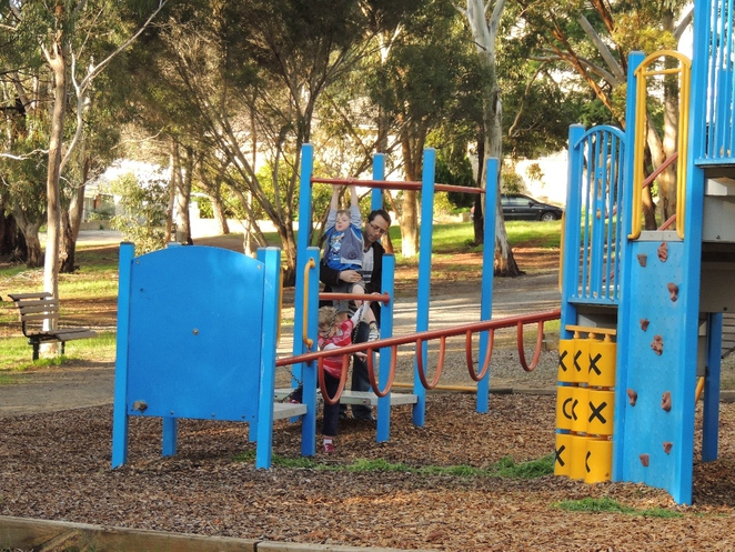 dog parks, south of adelaide, playground in, a playground, playground for children, park in adelaide, play equipment, exercise equipment, cc hood, multi-function