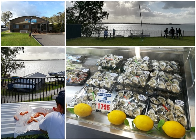holberts oyster farm, salamander bay, NSW, port stephens, oysters, prawns, fresh seafood, oysters, prawns, NSW, beat seafood in nelson bay,