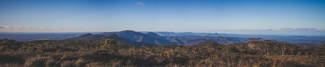 mount budawang, nsw, budawang national park, hike, view, bush, mountains